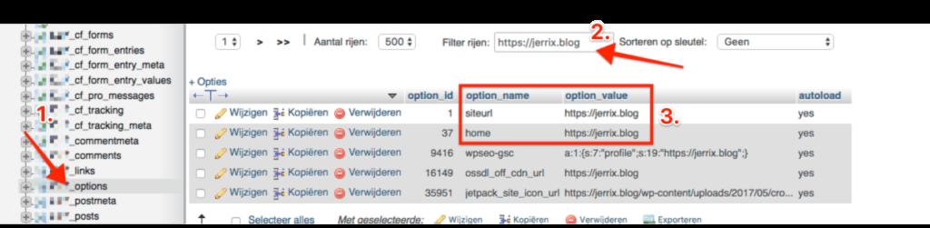 wp_options tabel instellingen via phpMyAdmin